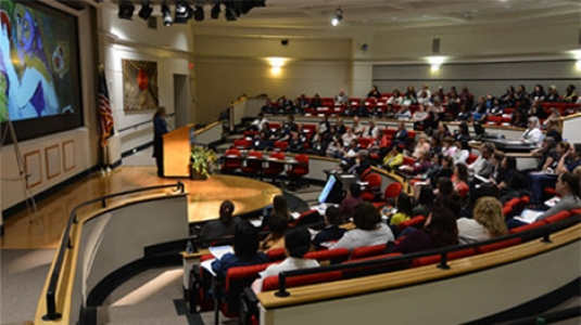 an auditorium presentation